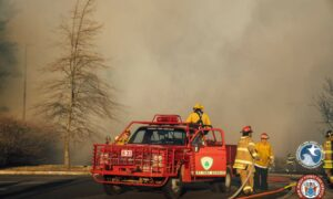Lakewood wildfire deemed intentional but investigation is stalled